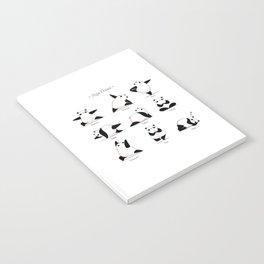 Yoga Panda II Notebook