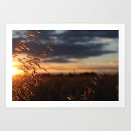 Longest Day of the Year Art Print