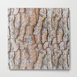 Pine bark textures Metal Print