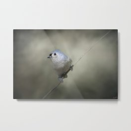 Little Tufted Titmouse Metal Print