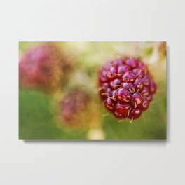 wild berries #8 Metal Print