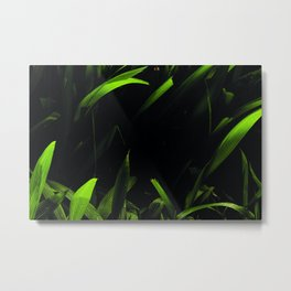 Green Love Metal Print