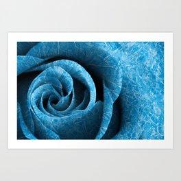 Arctic Rose Art Print