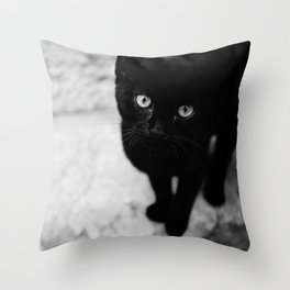 Croatian Kitten Throw Pillow