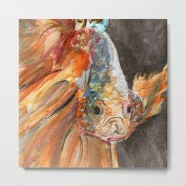Grumpy Betta Fish Metal Print