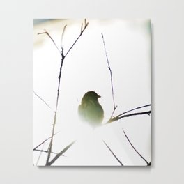 The golden sparrow Metal Print
