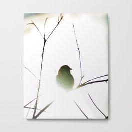 The golden sparrow Metal Print