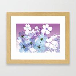 Almond Blossoms Violet 2 Framed Art Print
