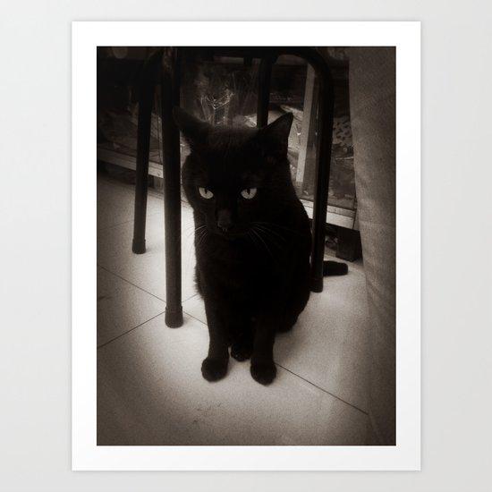 Black Kitty Art Print