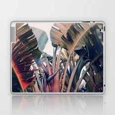 Hue Laptop & iPad Skin