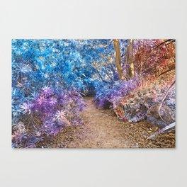 Fairy Tale Trail Canvas Print