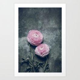 Beautiful Peonies Art Print