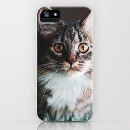 Sweet Kedi II iPhone Case