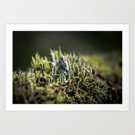 Home Planet Photo Series #1 Art Print