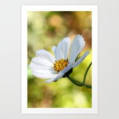 yellow & white flower Art Print