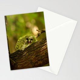 Baby owl yawn Stationery Cards