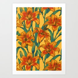 Tawny daylily flowers, blue and yellow Art Print