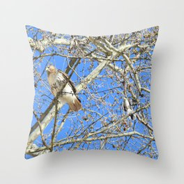Why can't we be friends? 34 Throw Pillow