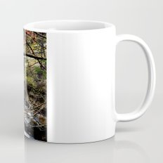 ˈwôtərˌfôl Mug