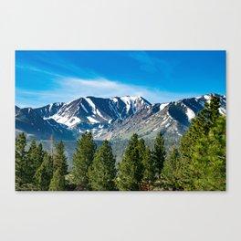 Mammoth Lakes Area, California Canvas Print