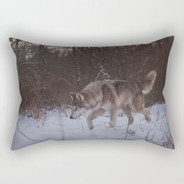 Searching Rectangular Pillow