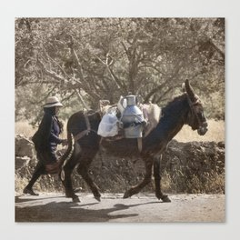 Portugal, the Algarve, a local woman in traditional costume with her mule Canvas Print