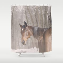 Gulliver in the snow Shower Curtain