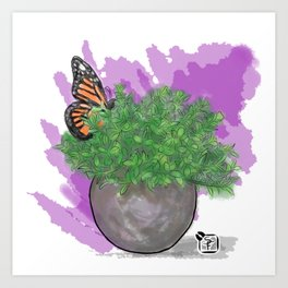 Water Color Butterfly Art Print