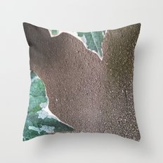 008 Throw Pillow