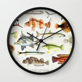 Illustrated Colorful Southern Pacific Exotic Game Fish Identification Chart No. 2 Wall Clock