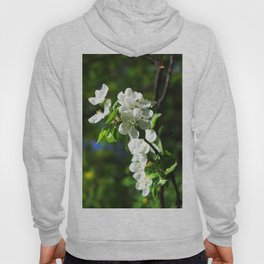 Apple blossom Hoody