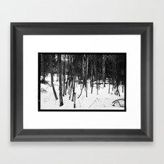 NORWEGIAN FOREST IX Framed Art Print