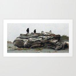 Study of Driftwood Art Print