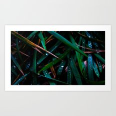 Dark Leaves Art Print