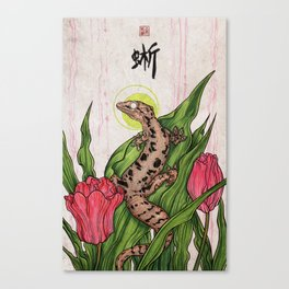 Mourning Gecko Canvas Print
