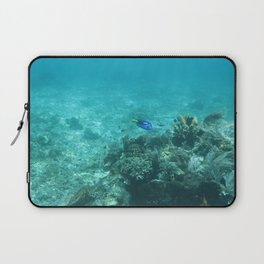Dory (Blue Tang) Laptop Sleeve