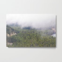 Forest From Above Metal Print