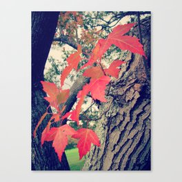 Lineage Canvas Print