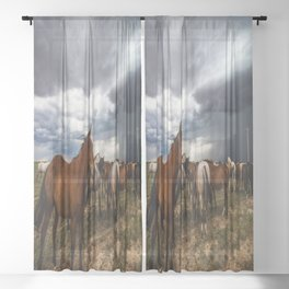 Pride - Horse Watches Over Herd as Storm Approaches Sheer Curtain
