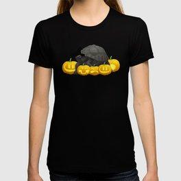 Halloween Turtle Witch Hat Jackolanterns T-shirt