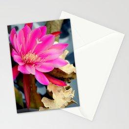 Midnight Memories Stationery Cards