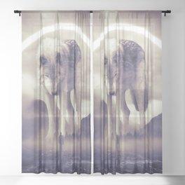 aegis II | wolf Sheer Curtain