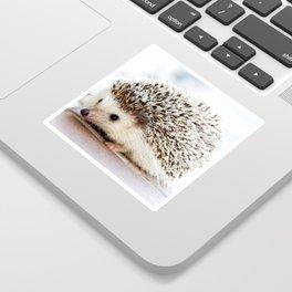 Geometric Hedgehog Sticker