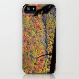 Feast Your Eyes on Fall iPhone Case