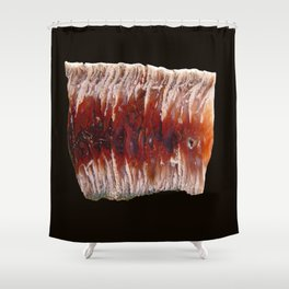 Raspberry Angelwing Shower Curtain