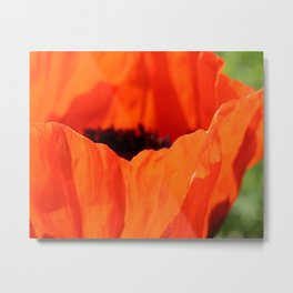 Up Close with the Poppy Metal Print