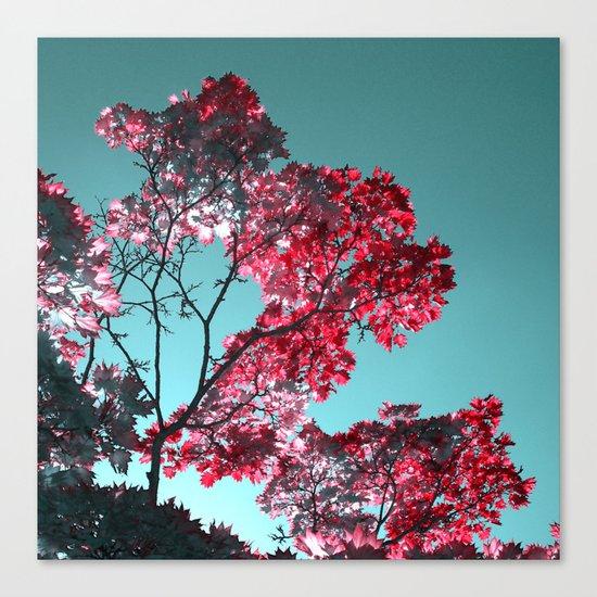 night colors II Canvas Print