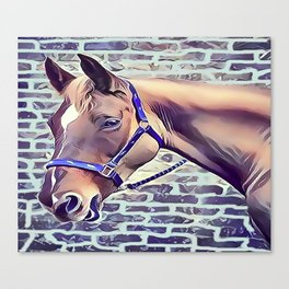Brown Horse with Harness Canvas Print