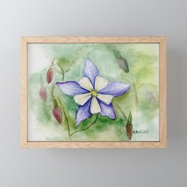 Blue Columbine Framed Mini Art Print