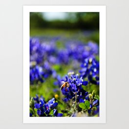 A Texas Weekend Art Print